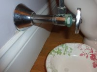 My Toilet Paper Test Shows That The Leak Is At Greenish Area In Picture There Something I May Do To Stop Leaking Thanks