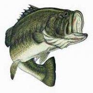 Fishman43