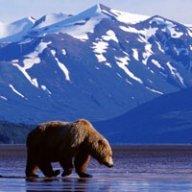 Alaskansummers