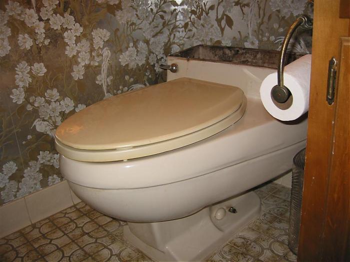 Diplomat toilet by Eljer
