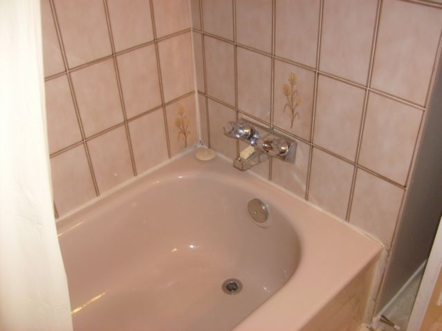 Do I need to replace this tub faucet? | Terry Love Plumbing ...