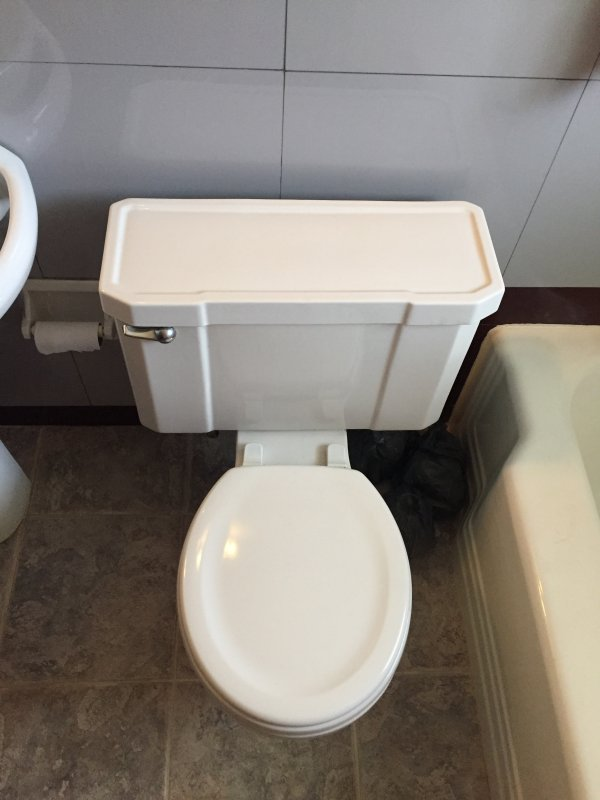Selling 3 5 Gallon Per Flush Gpf Toilet In Indianapolis Willing To Work Out Transportation Terry Love Plumbing Advice Remodel Diy Professional Forum