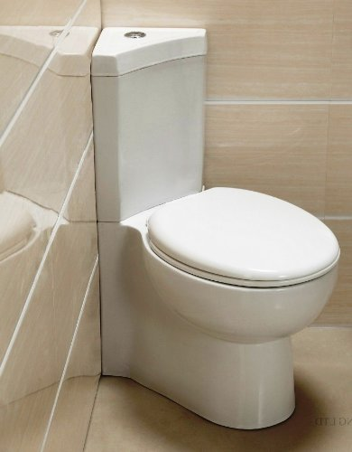 Corner Toilet : Looking for Corner Toilet Terry Love Plumbing & Remodel DIY ...