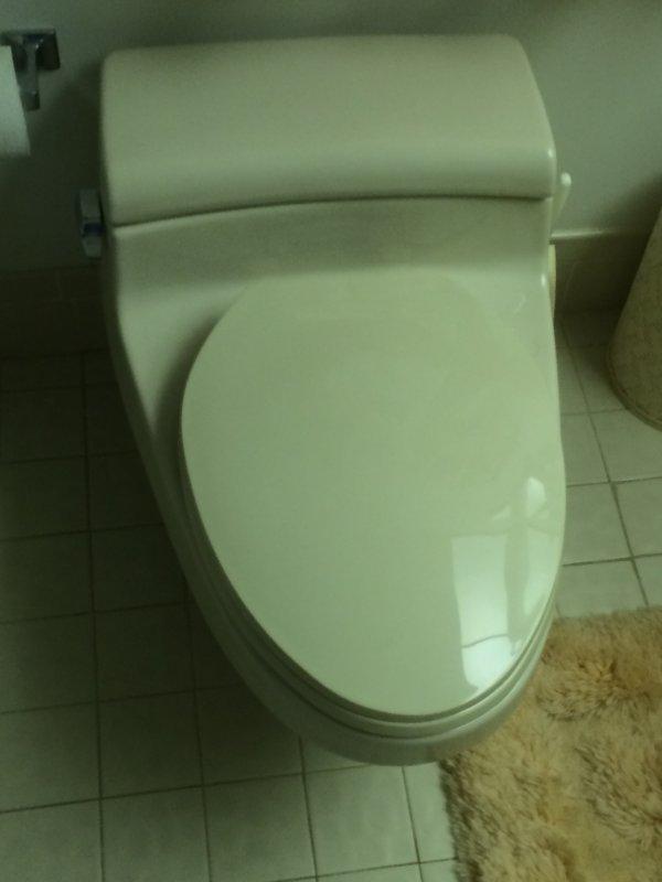 Eljer toilet identification help? | Terry Love Plumbing & Remodel ...