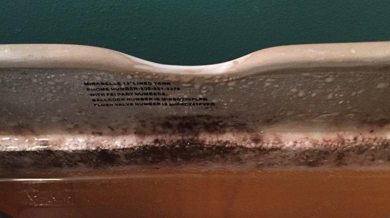 Mirabelle Toilets? | Terry Love Plumbing & Remodel DIY ...