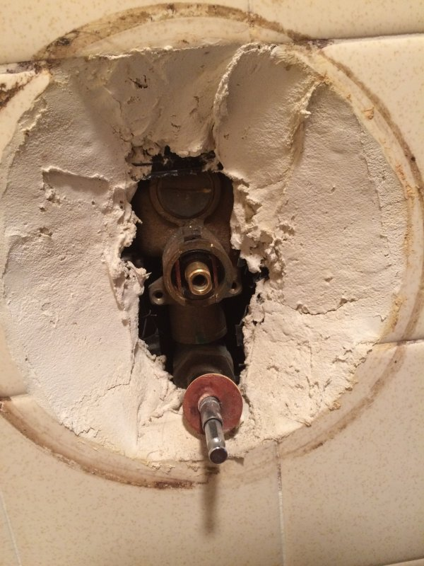 No Hot Water Pressure in Shower (not the valve)   Terry Love ...