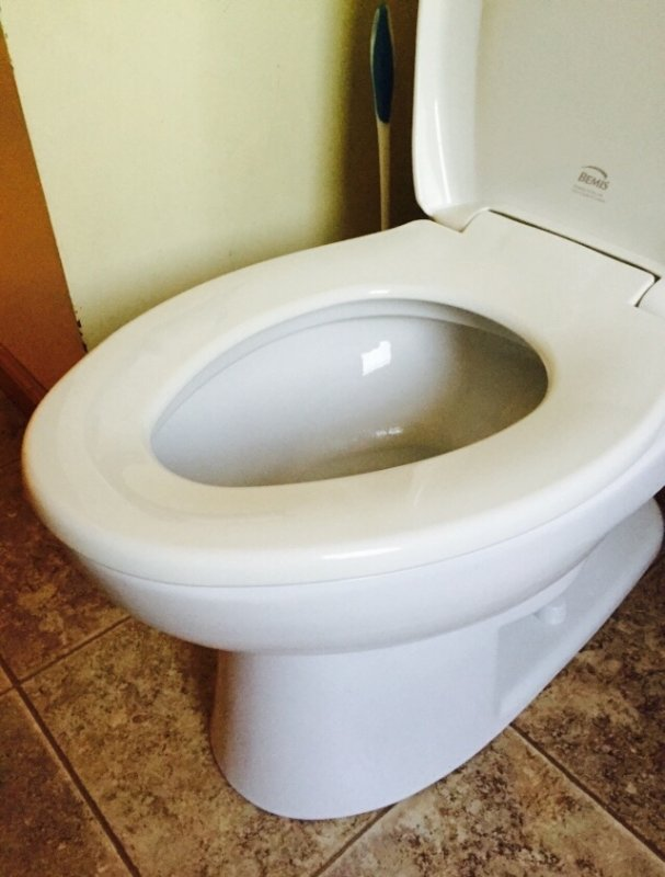 Fantastic Bemis Whisper Close Statite Toilet Seat Doesnt Cover Bowl Short Links Chair Design For Home Short Linksinfo