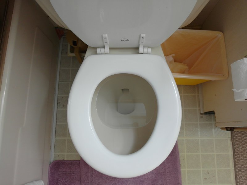 Should I Replace Old American Standard 4049, 1970\'s Toilet? | Terry ...