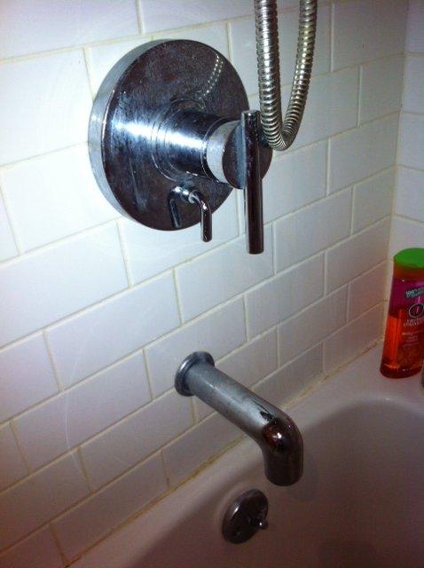 Shower Diverter 1.JPG