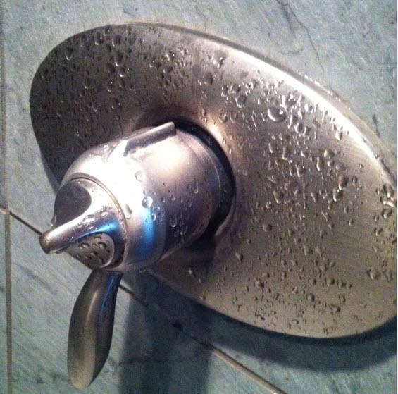 Squeaky Hansgrohe shower valve | Terry Love Plumbing & Remodel DIY ...