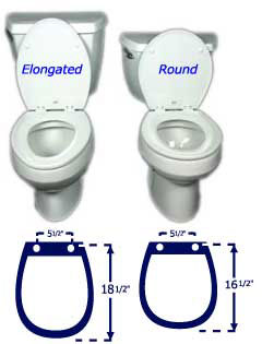Toto Vespin Seat With Dual Potty