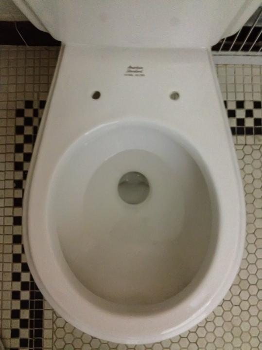Suggestions for bidet seat for American Standard Toilet | Terry Love ...