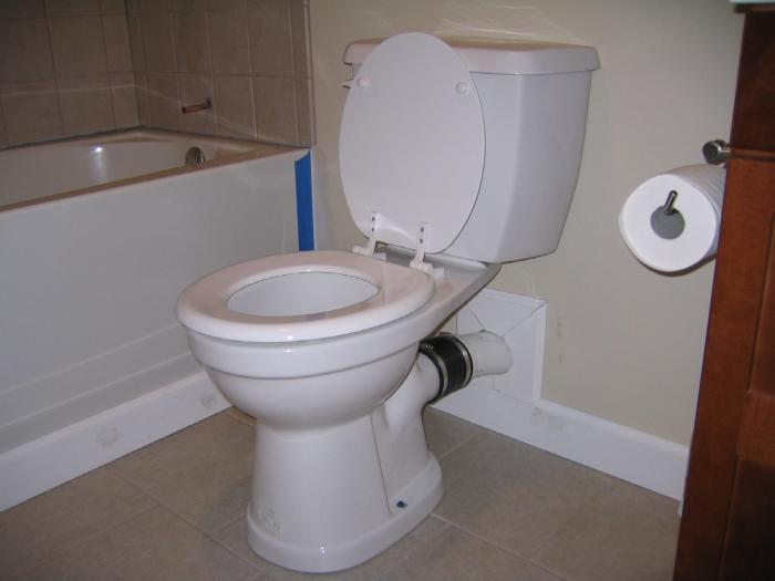 Back Discharge Toilet