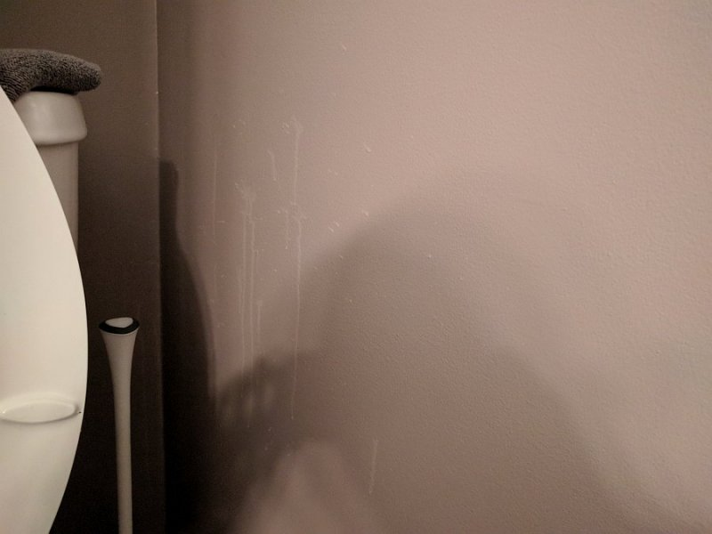 Toilet - Wall Spray.jpg