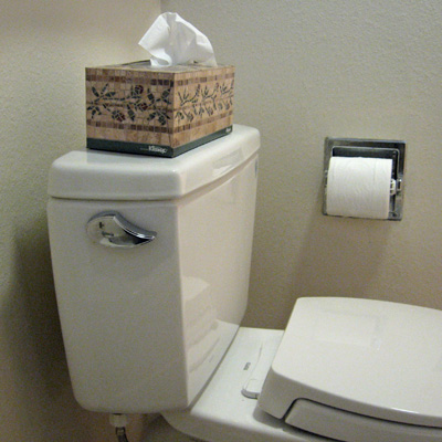 toilet paper holder behind toilet  toilet paper holder - most convenient place for it to be | Terry ...