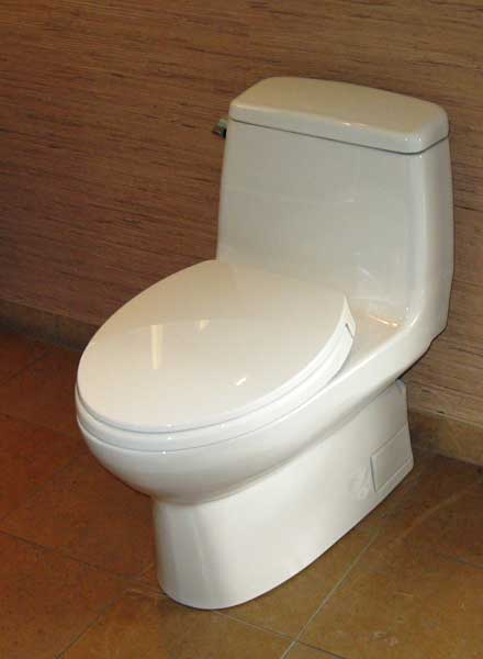 Toto carlyle ms874114sg toilet review comments and pictures terry love plumbing remodel diy - Foto toilet ...