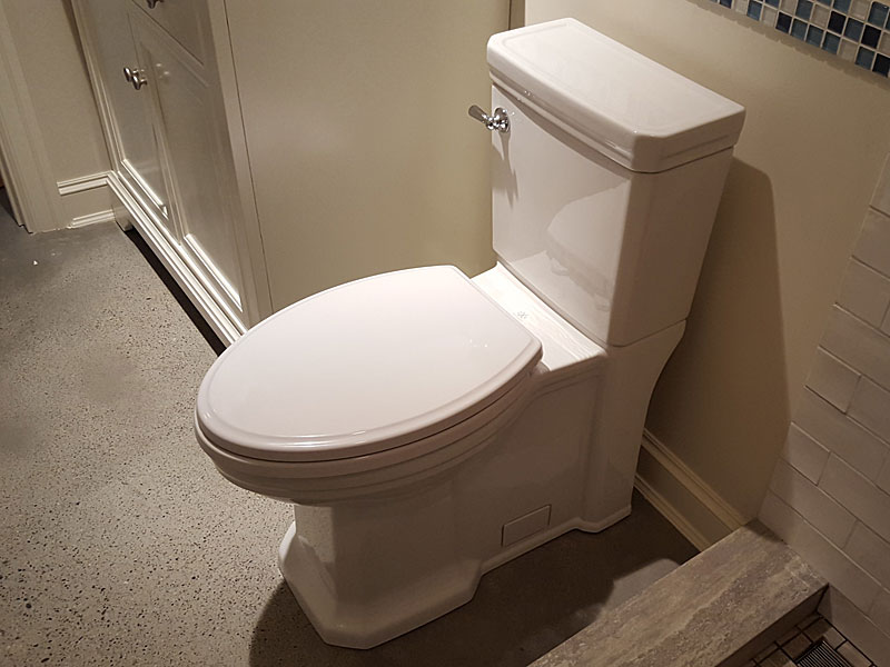 DXV Fitzgerald D2205CA.101 toilet installation with pictures | Terry ...