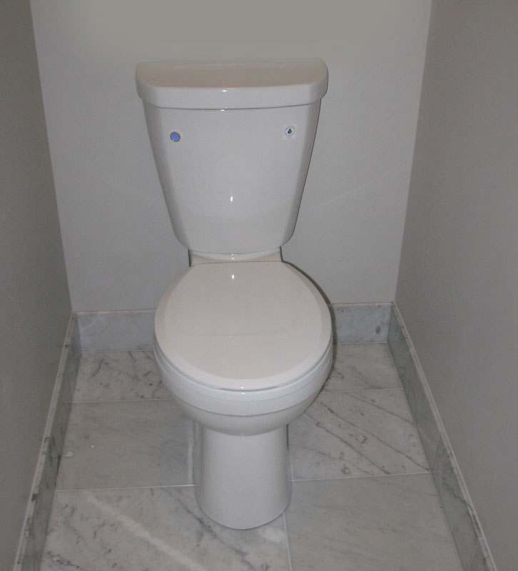 Delta Toilets with FlushIQ | Terry Love Plumbing & Remodel DIY ...