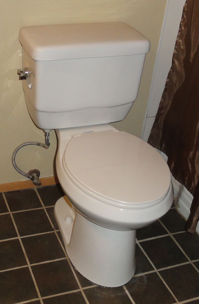 glacier bay toilet from home depot