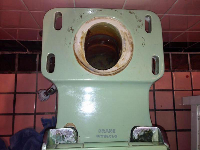 Toilet Flush Repair