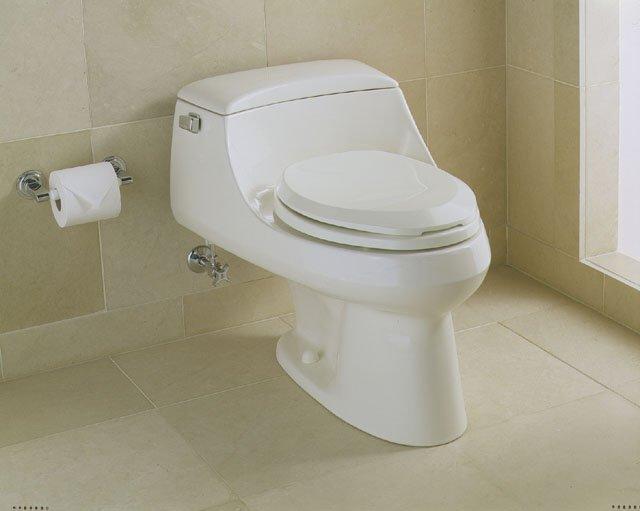 Surprising Kohler K 3466 San Raphael Opinions Terry Love Plumbing Dailytribune Chair Design For Home Dailytribuneorg
