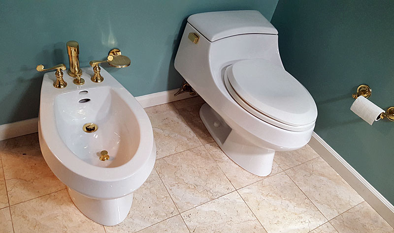 Struggle To Replace Bidet Faucet And Drain Terry Love Plumbing