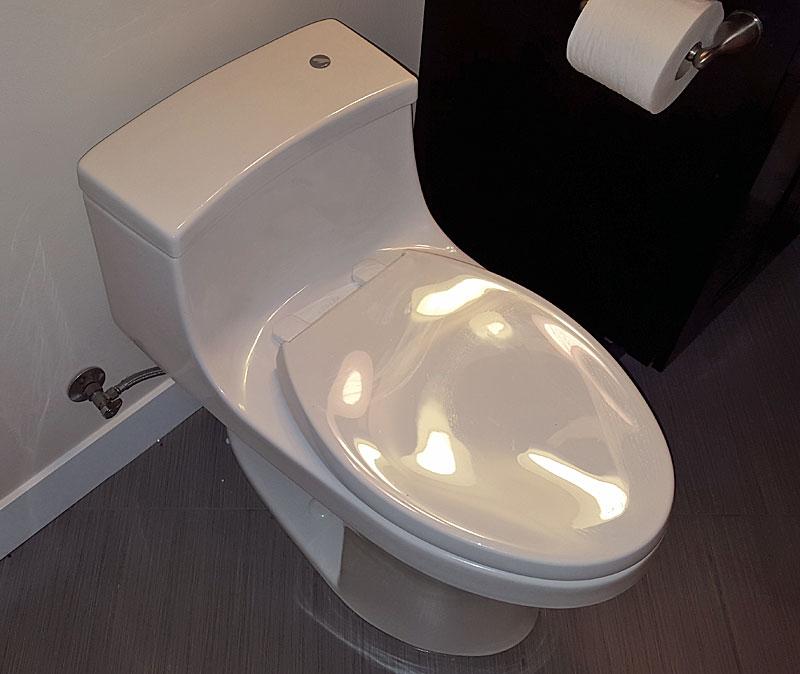Toilet Decision Toto Or Kohler Terry Love Plumbing