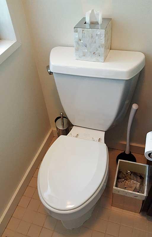 Kohler 1994 Wellworth Toilet Review Terry Love Plumbing