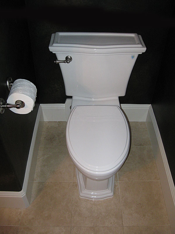 Toto Clayton Toilet Reviews Terry Love Plumbing