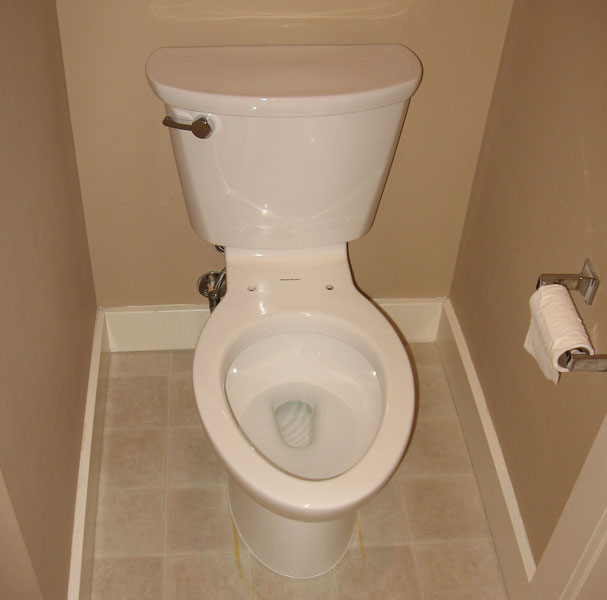 Cadet Pro Elongated Toilet 10 Quot Rough In 1 6gpf Terry