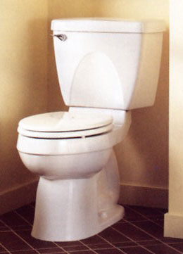 American Champion Right Height Ada Toilet