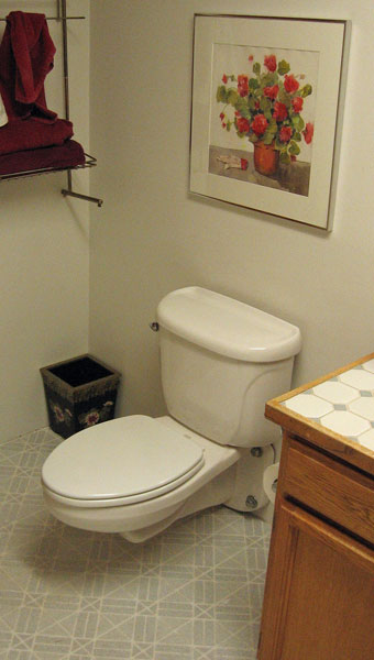 American Standard Glenwall wall mount toilet and Yorkville review ...