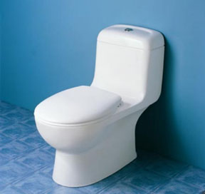 Caroma Caravelle 305 Toilet