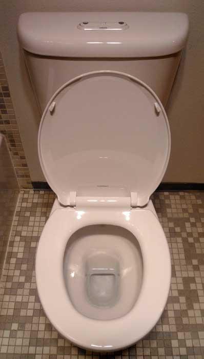 Toto Eco Flush Toilet