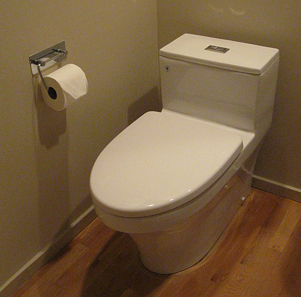 Inax Dover Dual Flush Toilet Review Pictures Amp Comments