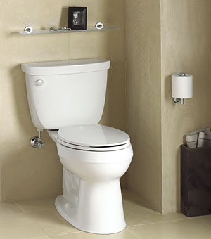 Kohler Cimarron Toilet Review Owner Comments And Pictures
