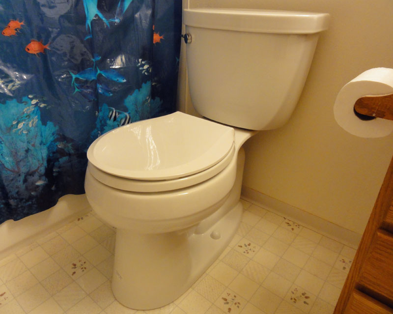 Kohler Cimarron 194 174 K 3887 Toilet Review Pictures And
