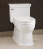 Terry Love S Consumer Toilet Reports A Report And Reviews