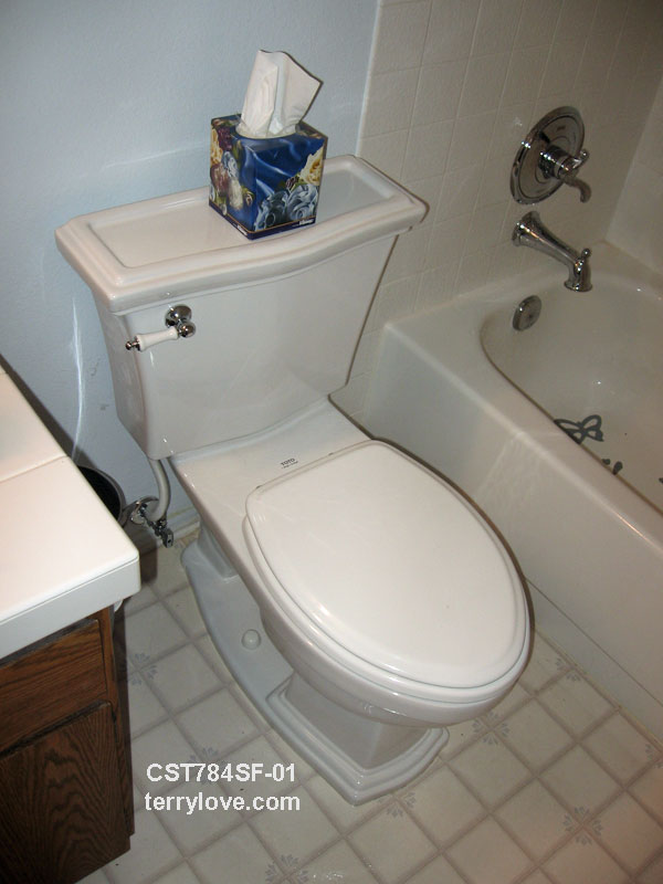 Toilet With A Large Base Terry Love Plumbing Amp Remodel