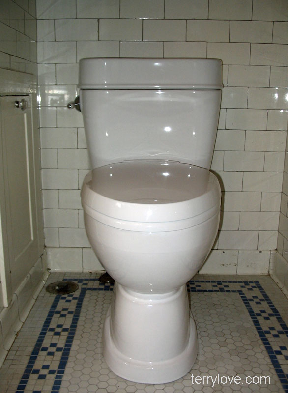 Toto Mercer toilet with pictures MS756204SF | Terry Love Plumbing ...